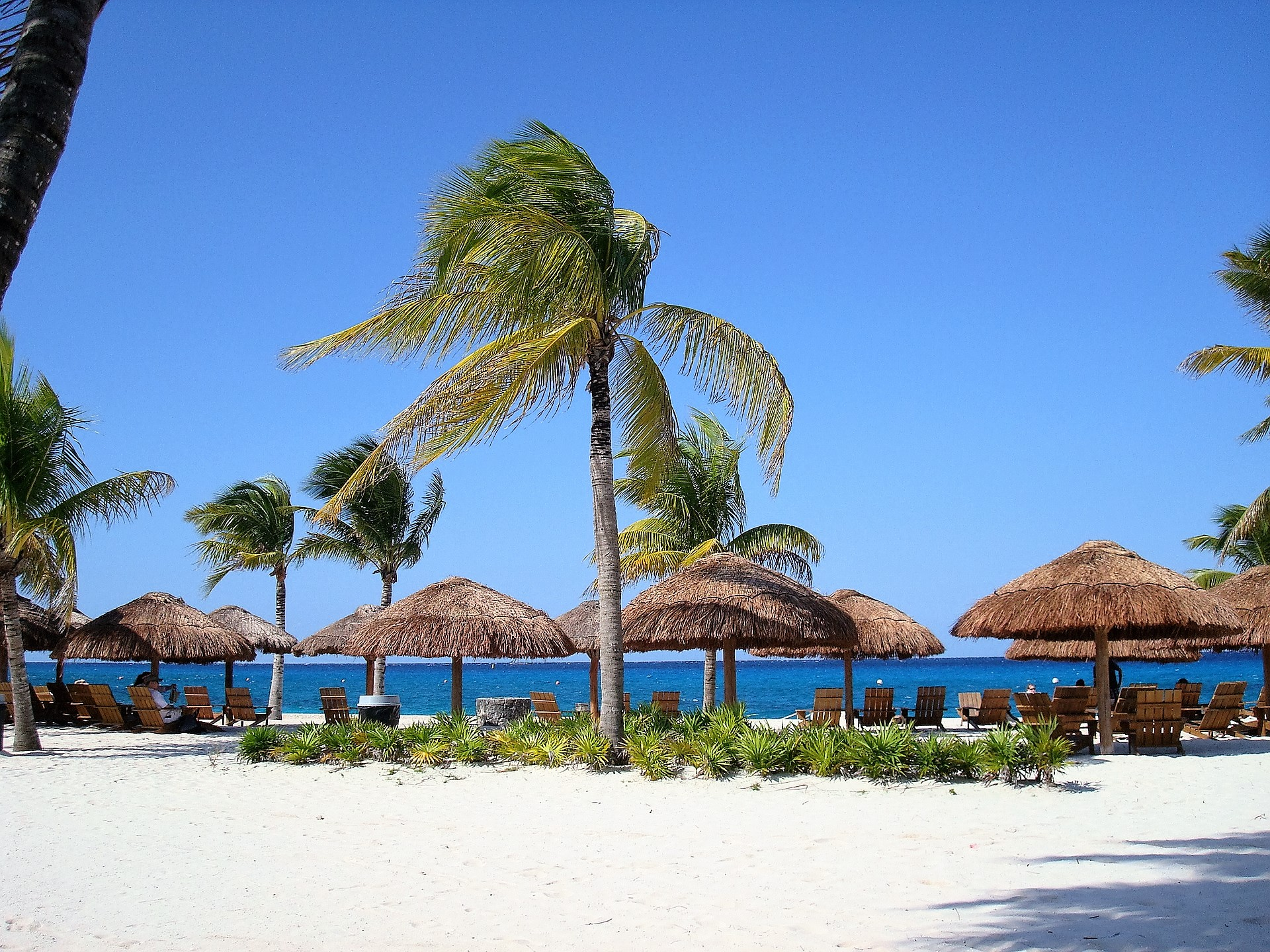 Cozumel My Cozumel beach clubs