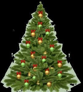 Cozumel My Cozumel holiday tree