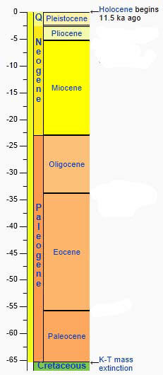 Cozumel Formation Geologic Time Scale