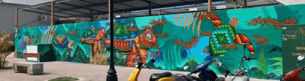 Cozumel My Cozumel 2019 Sea Wall 5